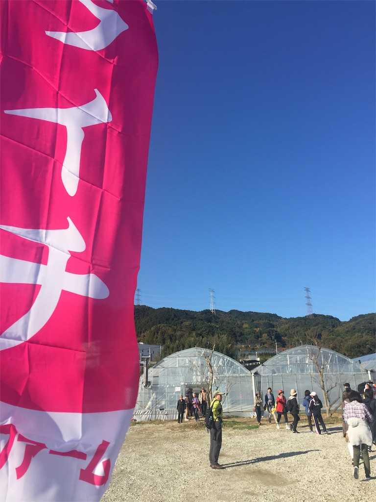 f:id:R-hanohano:20191201215312j:image
