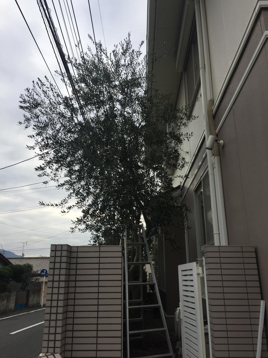 f:id:R-hanohano:20191229120926j:plain