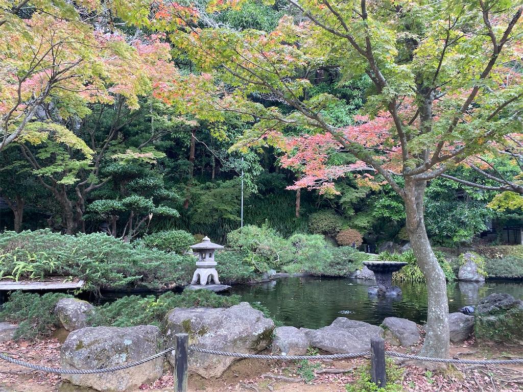 f:id:R-hanohano:20201126013549j:image