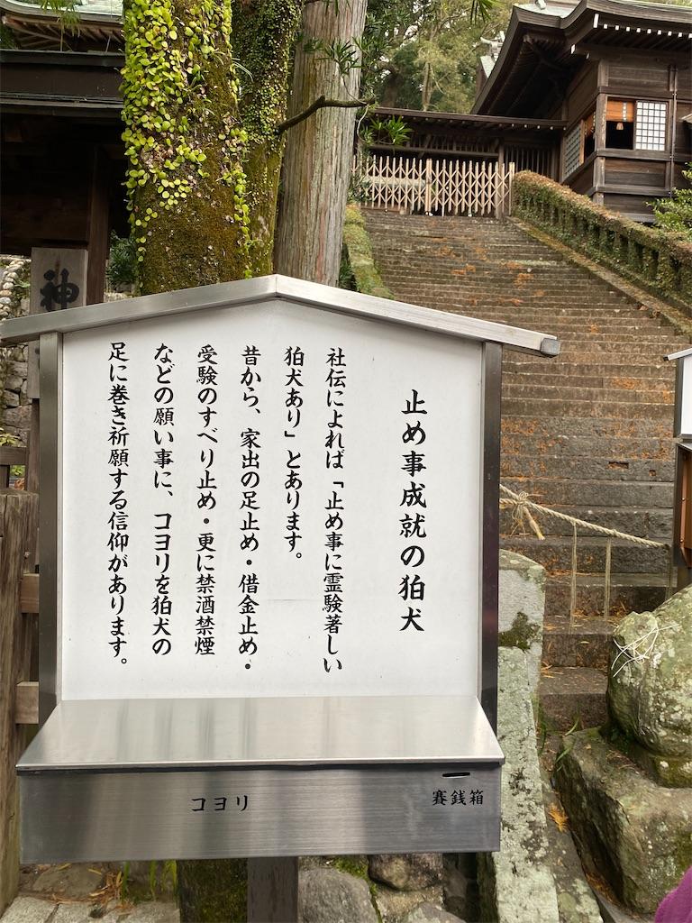 f:id:R-hanohano:20201128113201j:image