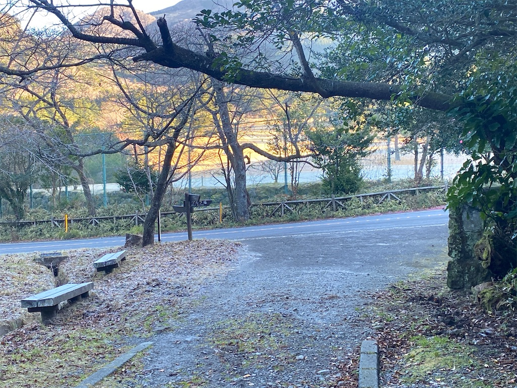 f:id:R-hanohano:20201213232311j:image