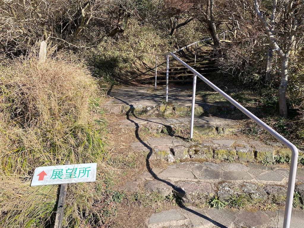 f:id:R-hanohano:20201213233611j:image