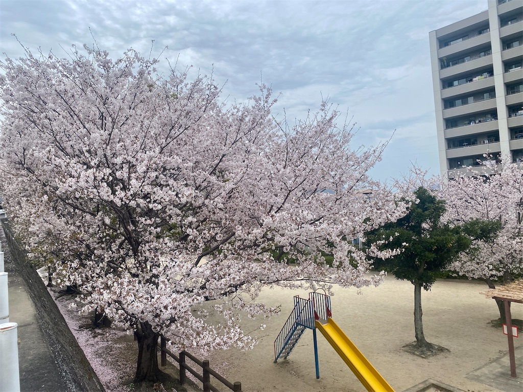 f:id:R-hanohano:20210416150737j:image