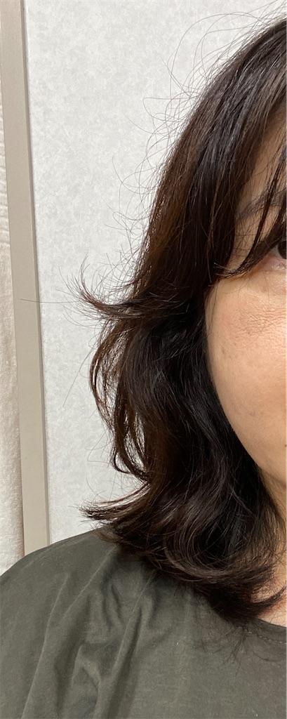 f:id:R-hanohano:20210915080008j:image