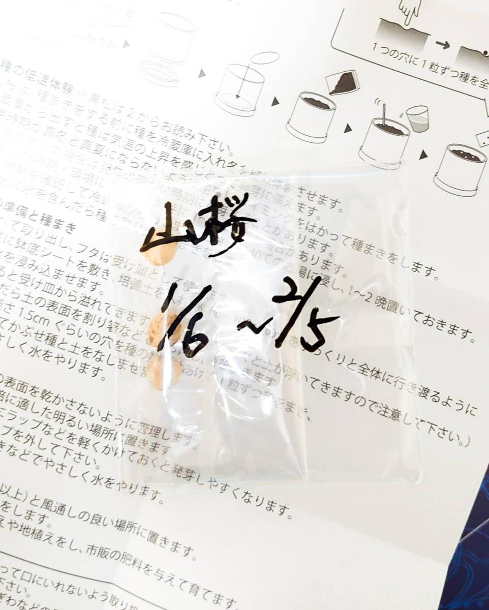 f:id:R-kun:20200106212009p:plain