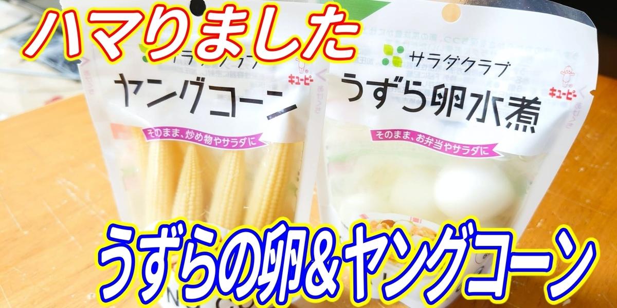 f:id:R-kun:20200518202318j:plain