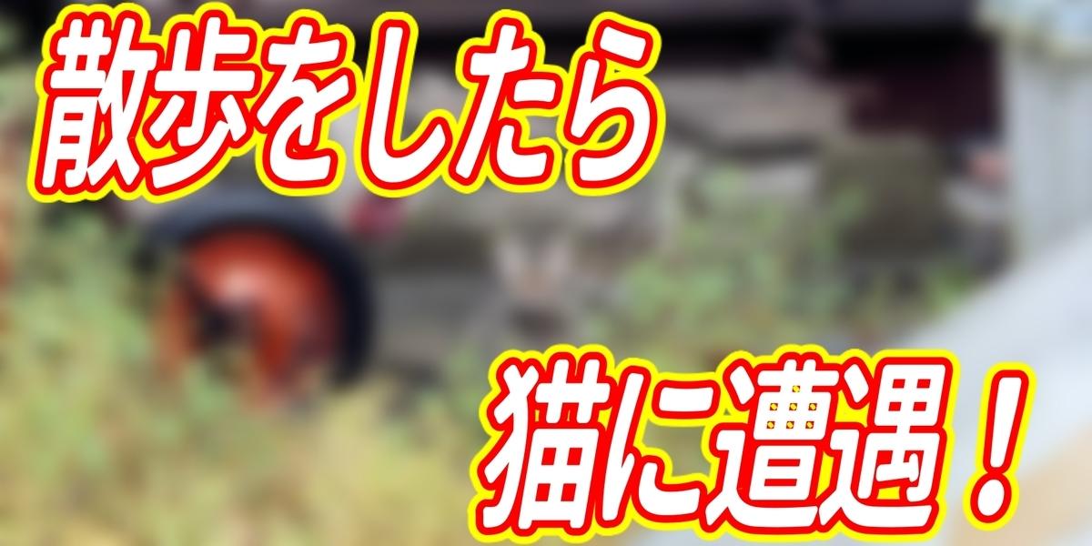 f:id:R-kun:20200519114735j:plain