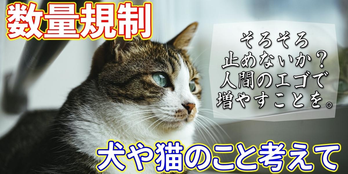f:id:R-kun:20200804183429j:plain