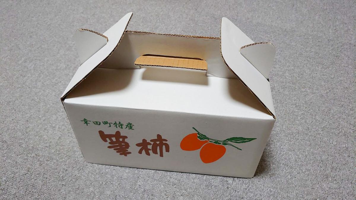 f:id:R-kun:20201030163547j:plain