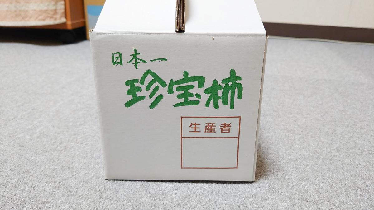 f:id:R-kun:20201030163616j:plain