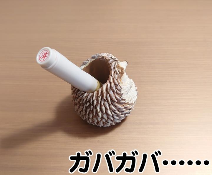 f:id:R-kun:20210211112938j:plain