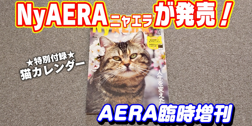 f:id:R-kun:20210219121336j:plain