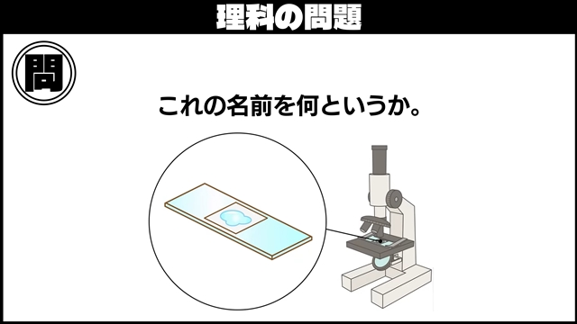 f:id:R-kun:20210802095259j:plain