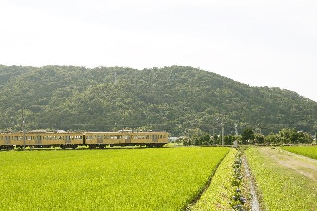 電車が通る田舎の景色