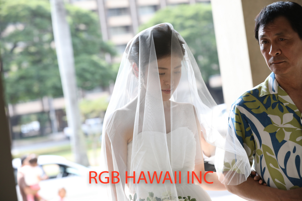 f:id:RGBHAWAII:20170128130216j:plain