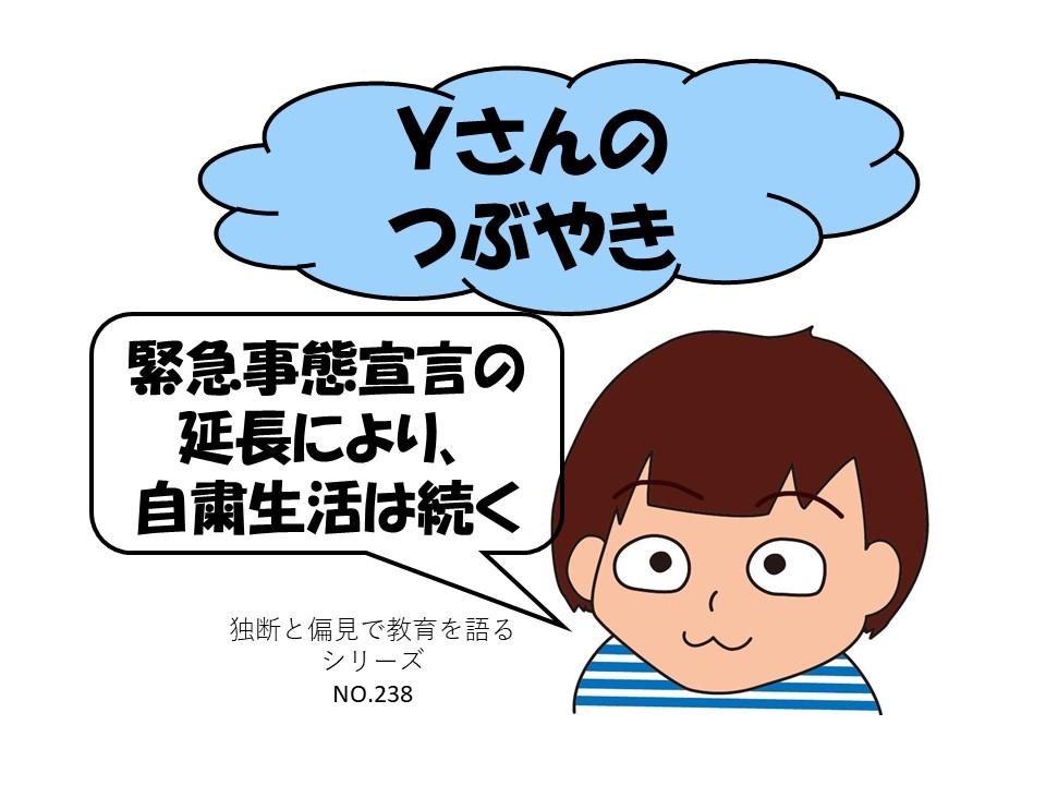 f:id:RICO_Ysan:20210529221108j:plain