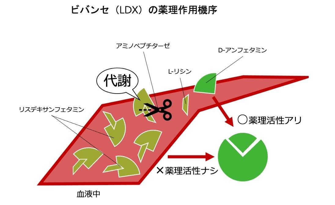 f:id:RIDC_JP:20210204145413j:plain