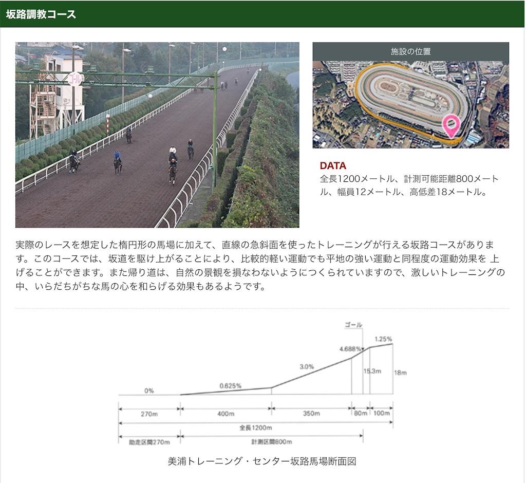 f:id:RM_horse:20210305154153j:image