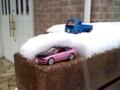 雪は降りすぎた(笑)