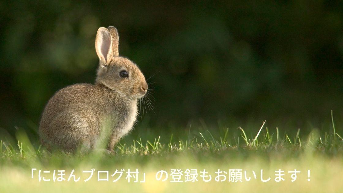 f:id:Rabbit8:20210710173355j:plain