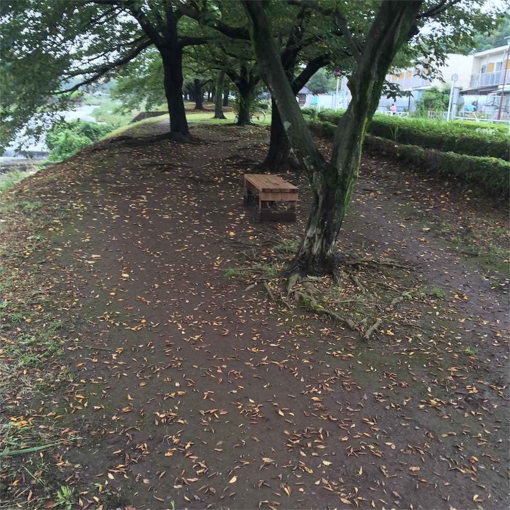 f:id:Ray-Honoka:20171018145416j:image