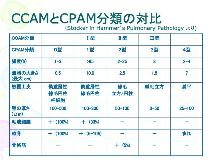 CPAM_CCAM比較