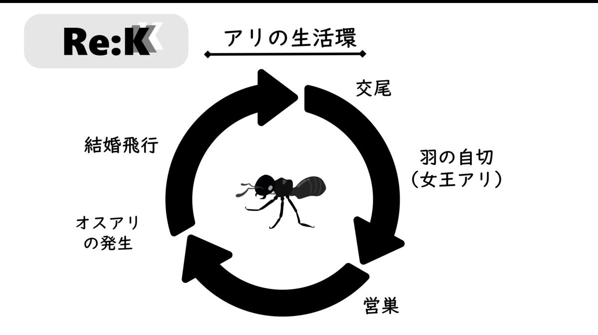 f:id:ReK2Science:20200921071539p:plain