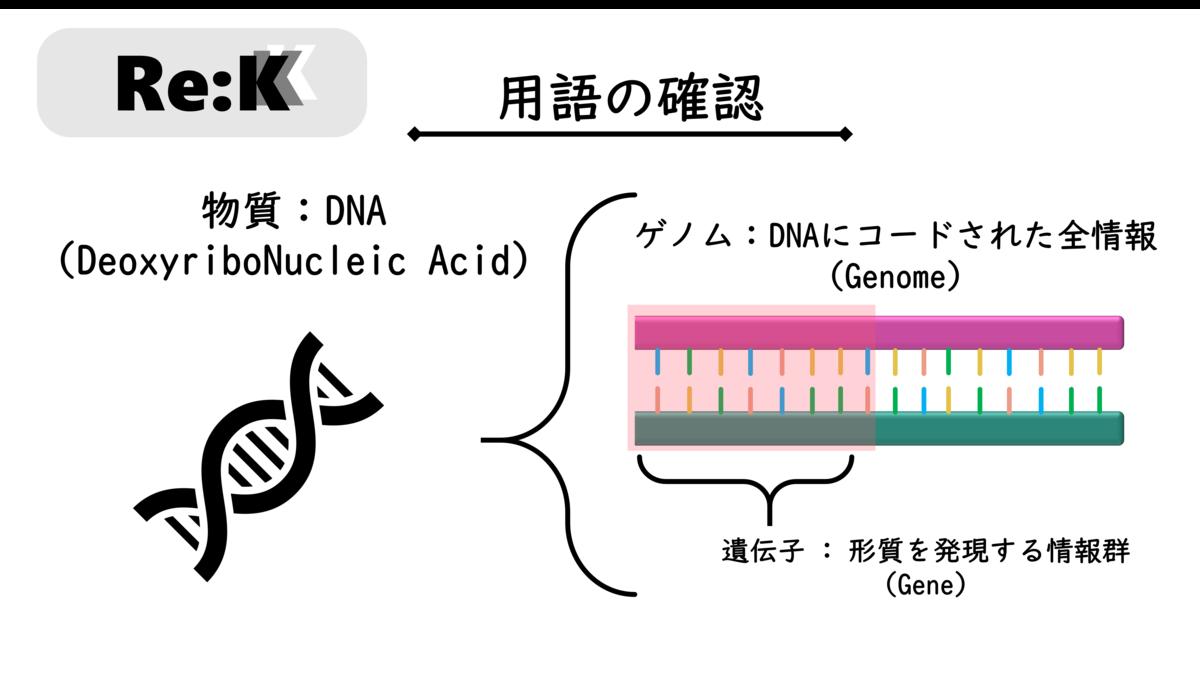 f:id:ReK2Science:20201008091724p:plain
