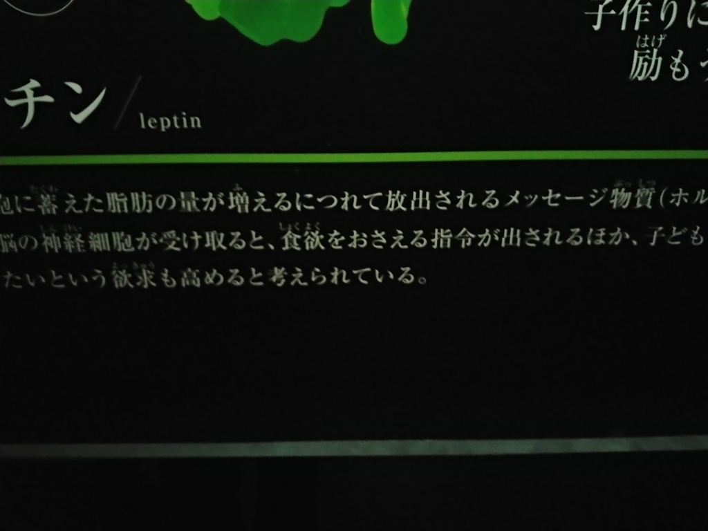 f:id:Re_hirose:20180602221821j:plain