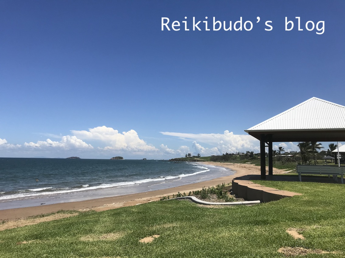 f:id:Reikibudo:20200228130450j:plain