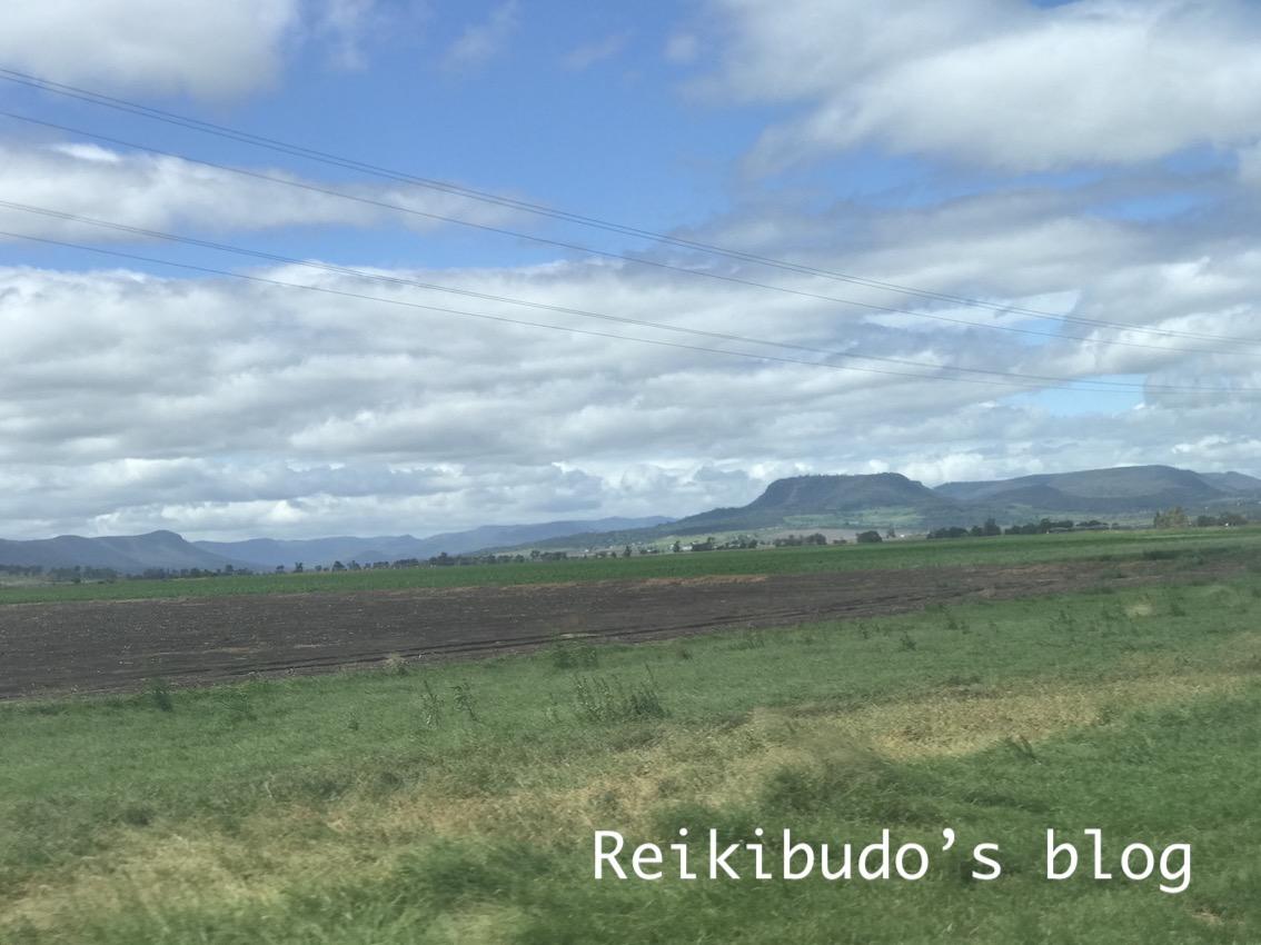 f:id:Reikibudo:20200320081604j:plain