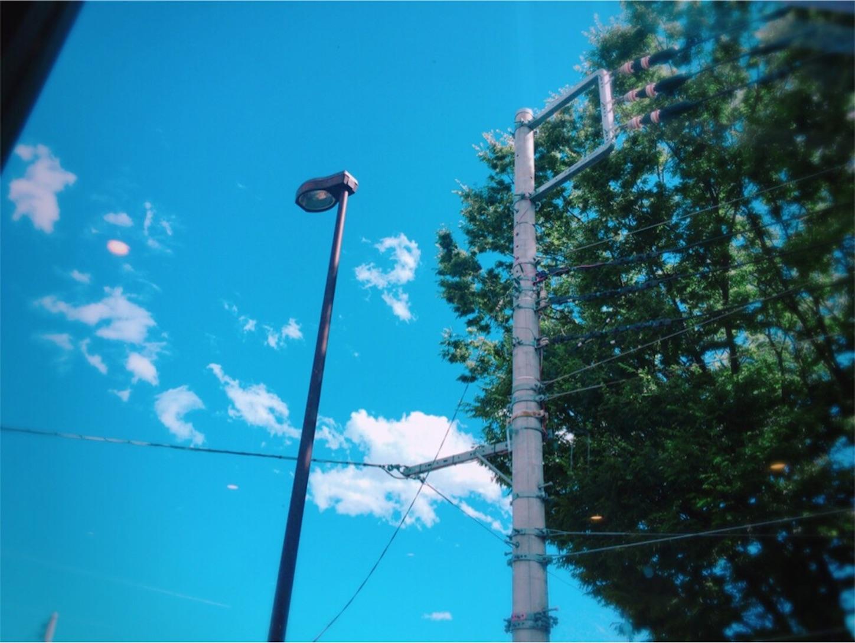 f:id:Ren_newkun38:20190621010958j:image