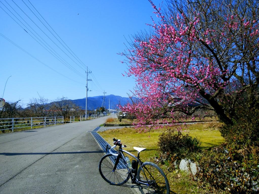 f:id:Ride-na:20180219211656j:plain