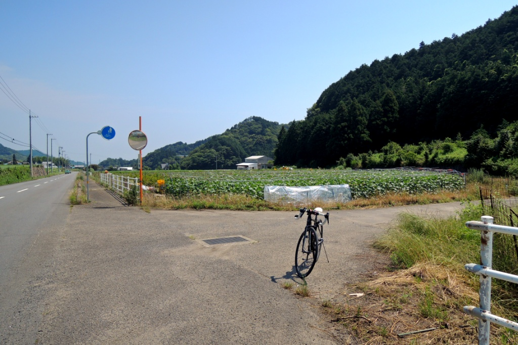f:id:Ride-na:20180624135618j:plain