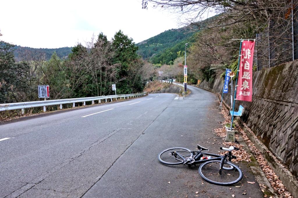 f:id:Ride-na:20190102220827j:plain
