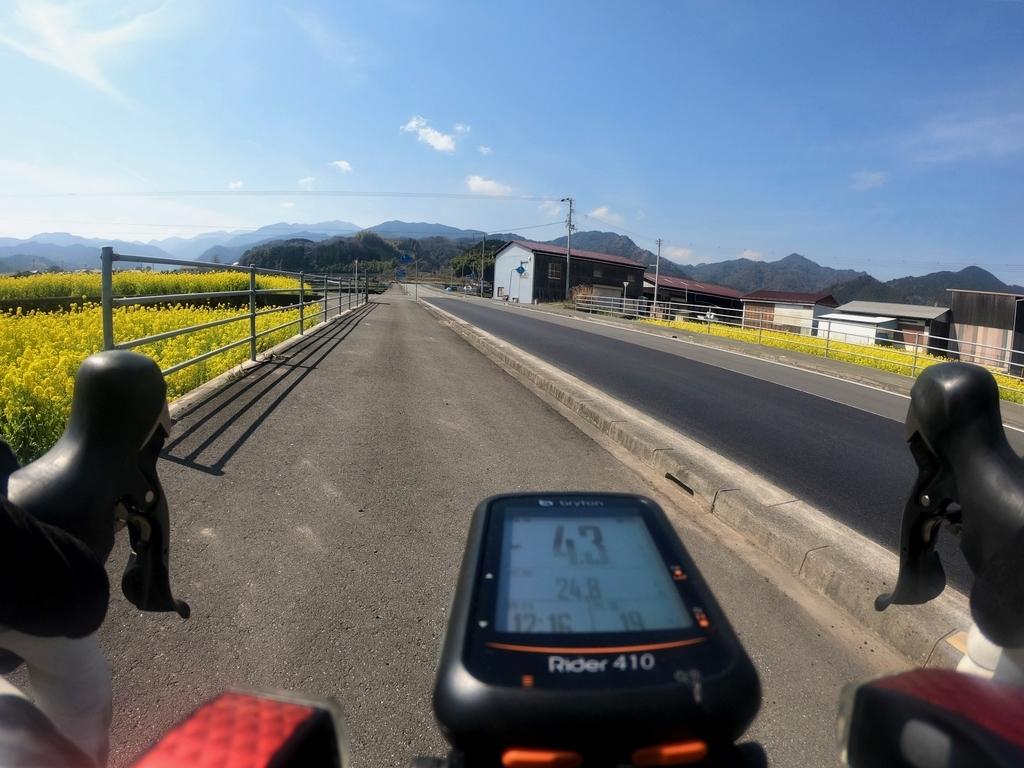 f:id:Ride-na:20190309233421j:plain