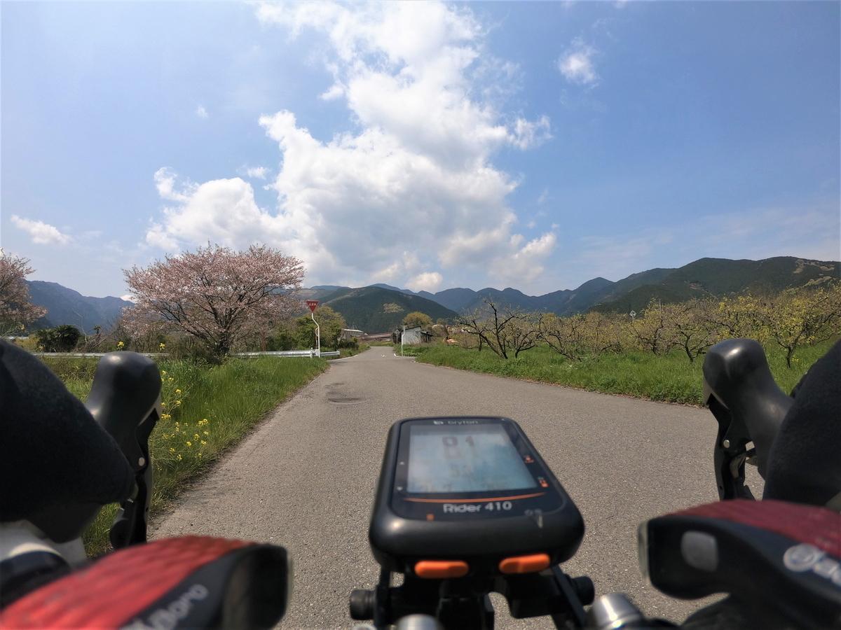 f:id:Ride-na:20200411163125j:plain