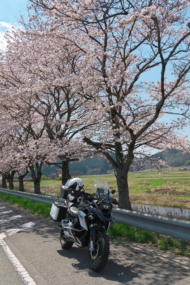 f:id:Rider_Hide:20200404204241j:plain