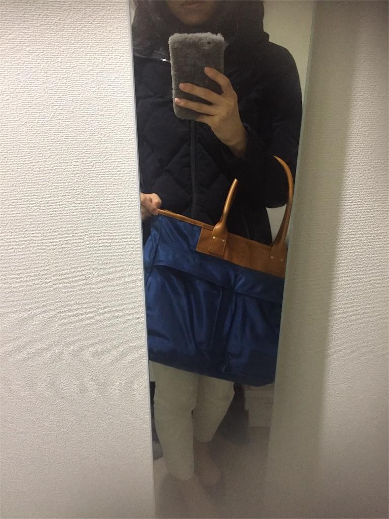 f:id:Rie_Yonemitsu:20161205235842j:image