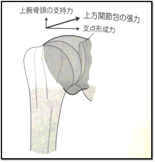f:id:Rihayama:20201210002242p:plain