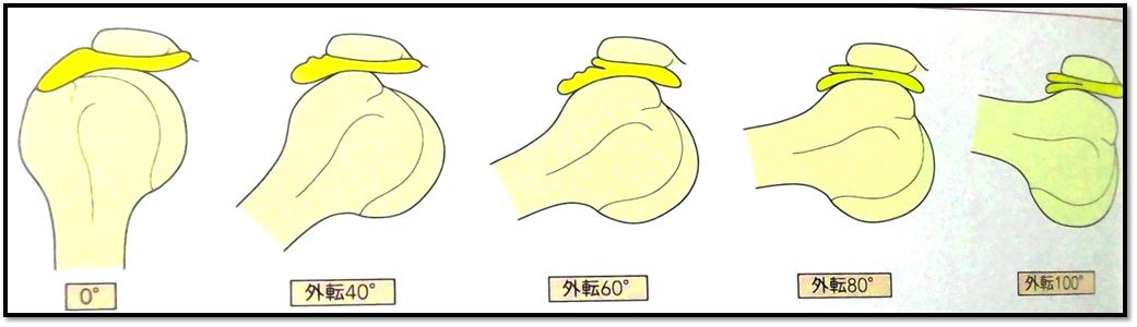f:id:Rihayama:20201211002613p:plain