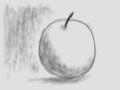 [ちょっと本格的]りんご02