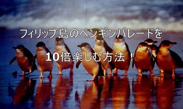 フィリップ島のペンギンパレード...