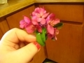 pink hana