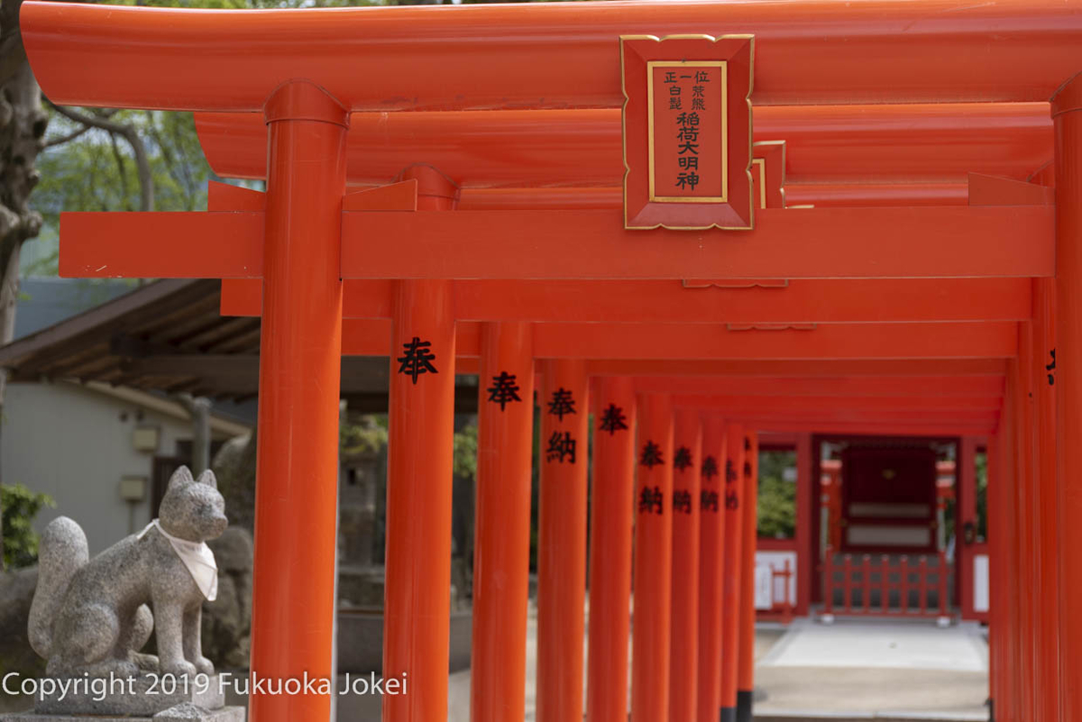 福岡スナップ写真 福岡市内 住吉神社内