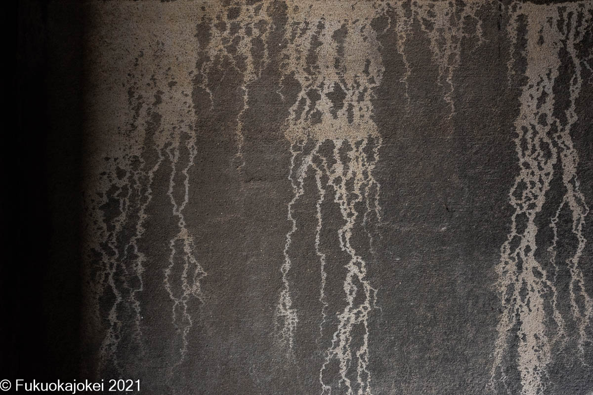 f:id:Rover200:20210627182811j:plain