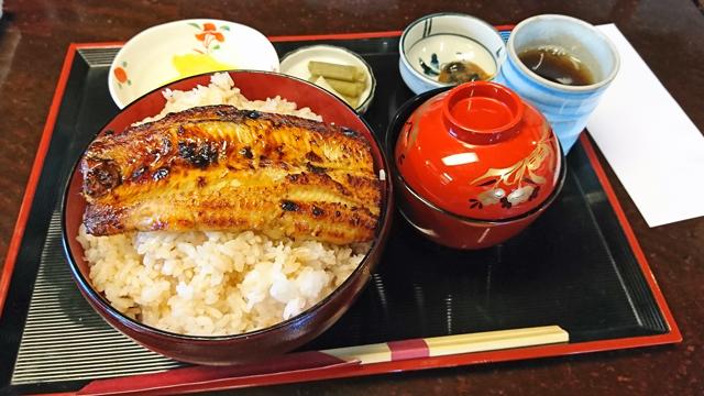 「岩井屋」さんのうな丼ご飯大盛り