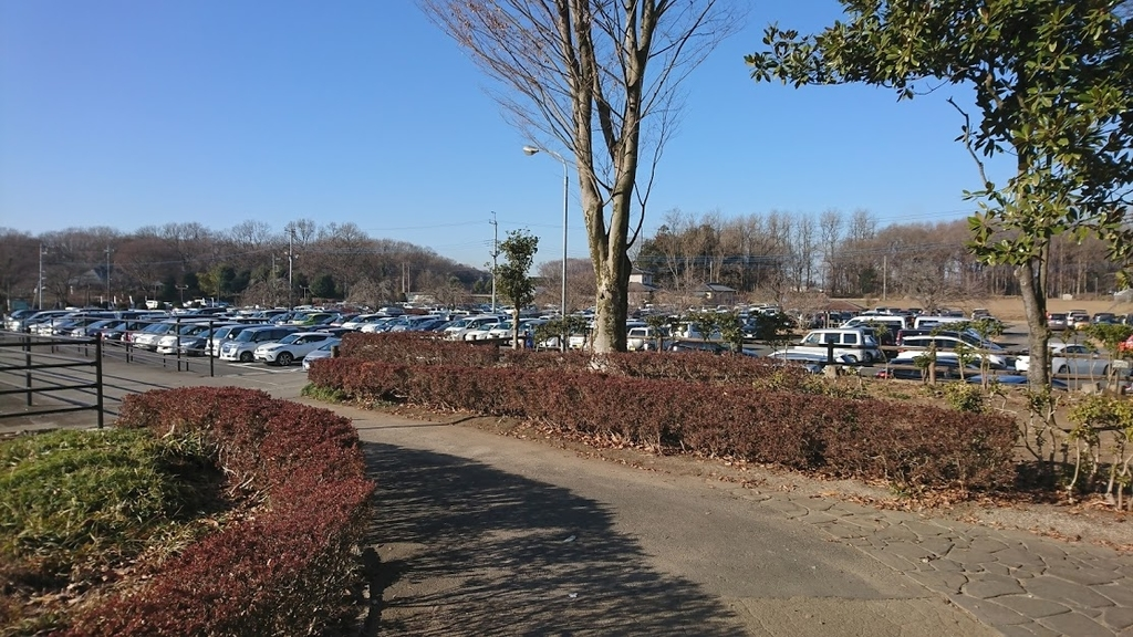 第13回下野市天平マラソン大会の駐車場