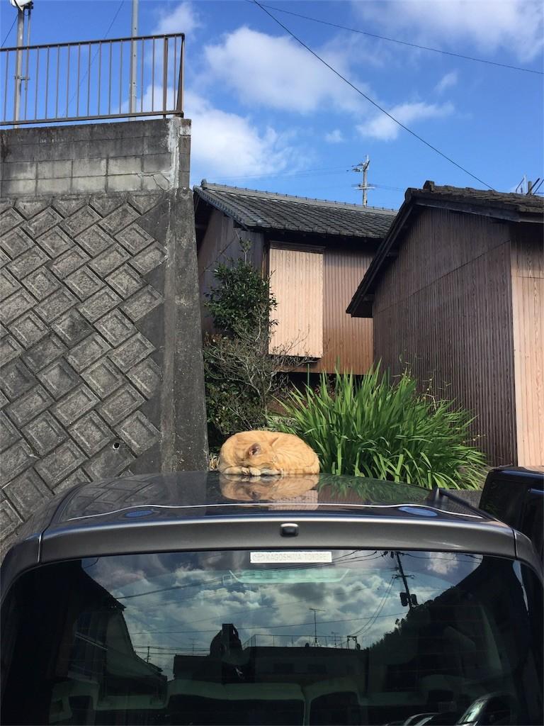 f:id:RyoKAWAGOE:20161207084012j:image