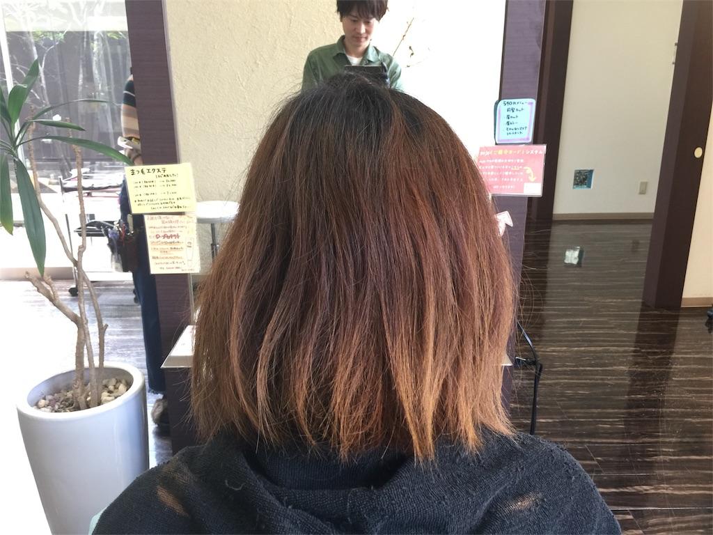 f:id:Ryoheishimizu:20170424062859j:image
